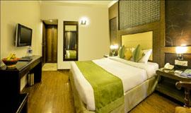 Superior Room<