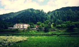 Hotels In Chakrata