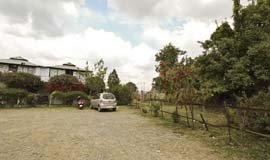 Hotels In Ranikhet