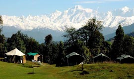 Hotels In Chopta
