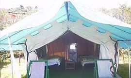 Dhanachuli Hotels Resort