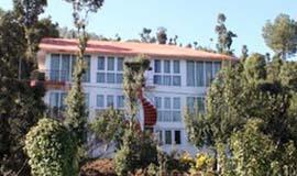 Hotels In Dhanachuli