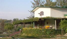 Cheap Hotels Near Dehradun Railway Station