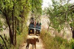 Bijrani Gate