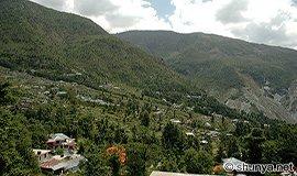 Dharamsala Nature