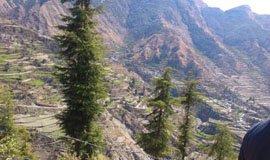 Chakrata Nature