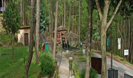 Binsar Adventure Activities