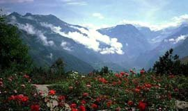 Mussoorie Kids Attractions