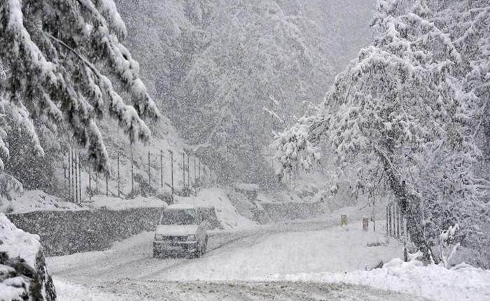 Uttarakhand News