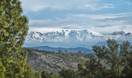 Ranikhet Adventure Activity