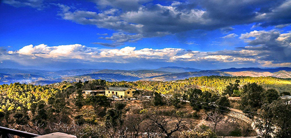 Binsar Holiday Packages