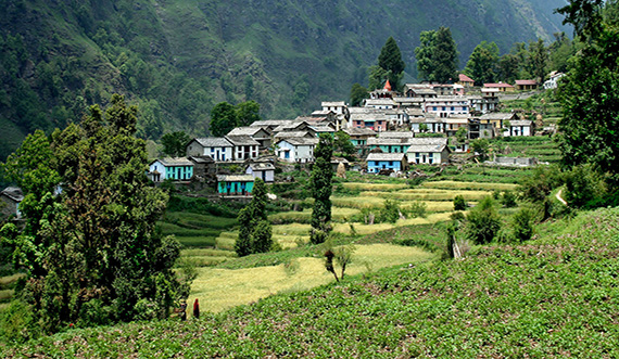 ranikhet Holiday Packages