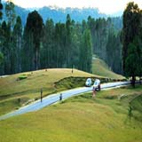 Ranikhet Packages