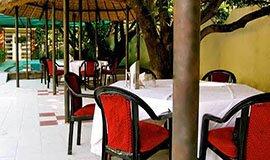 The Safari Café